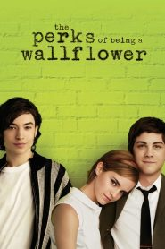 The Perks of Being a Wallflower.2012