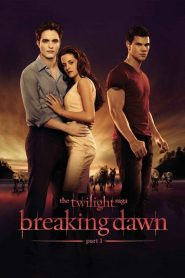 The Twilight Saga Breaking Dawn Part 1 2011