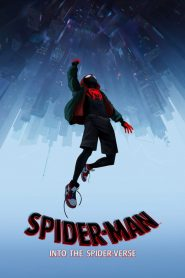 Spider Man Into The Spider Verse 2019