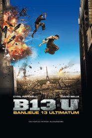 District 13 Ultimatum 2009